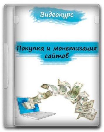 Покупка и монетизация сайтов (2015) Видеокурс