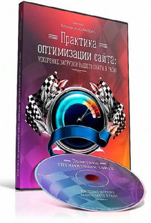Практика оптимизации сайта (2015) Видеокурс
