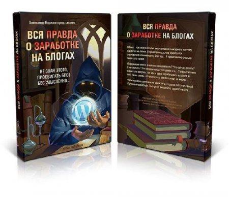 Александр Борисов - Вся Правда о заработке на Блогах (2014) Обучающий видеокурс