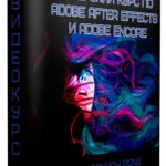 Авторский курс по Adobe After Effects и Adobe Encore + Бонусы (2014)