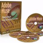 Adobe Muse для чайников — версия VIP. Видеокурс (2014)